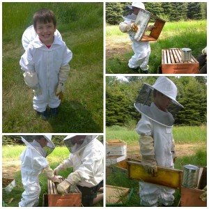 dylan-beekeeper-collage1