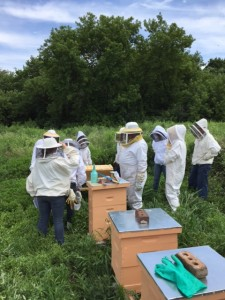 July's Field Day. I'm the one in the bee suit.  :) Special thanks to Brenda for checking the top bar hive and leading that review.